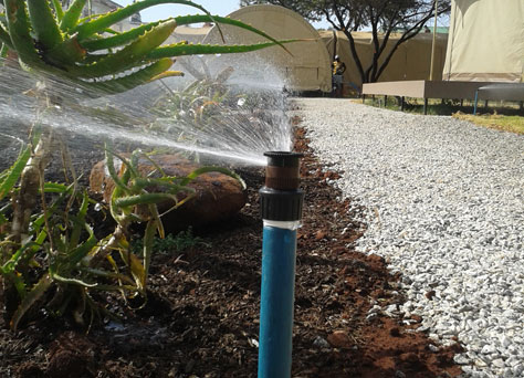 Irrigation_featured