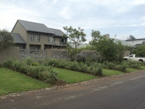 Sbahlescapes-House-Koch-project-front-lawn